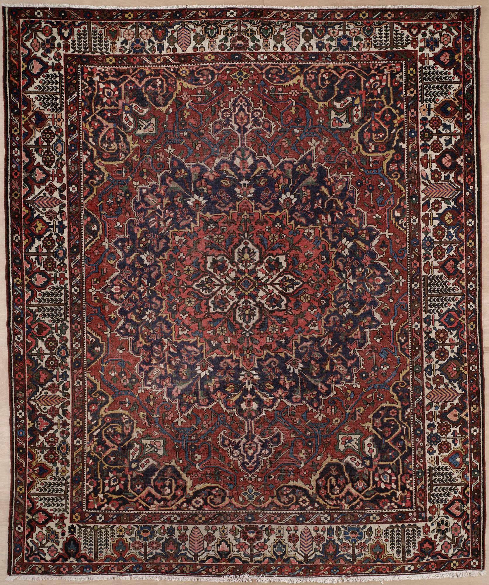 Persian Bakhtiari Rectangle 10x12