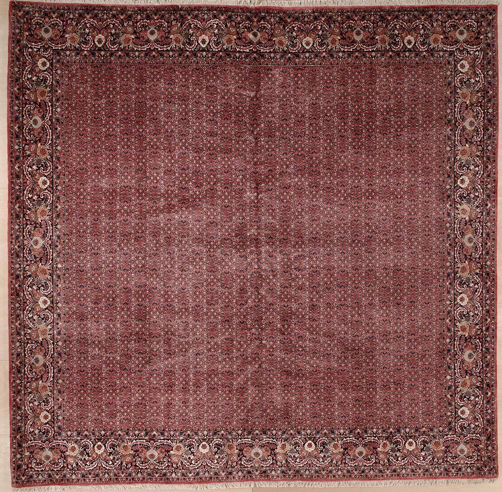 Persian Bijar 11x11