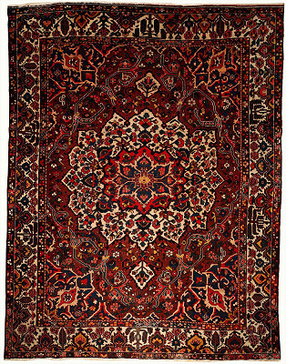 Persian Bakhtiari Rectangle 10x13