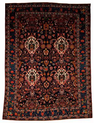 Persian Bakhtiari Rectangle 10x14