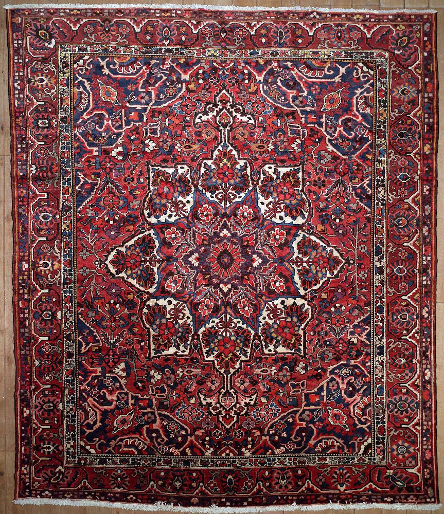 Persian Bakhtiari 11x13
