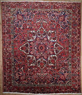 Persian Bakhtiari Rectangle 11x13