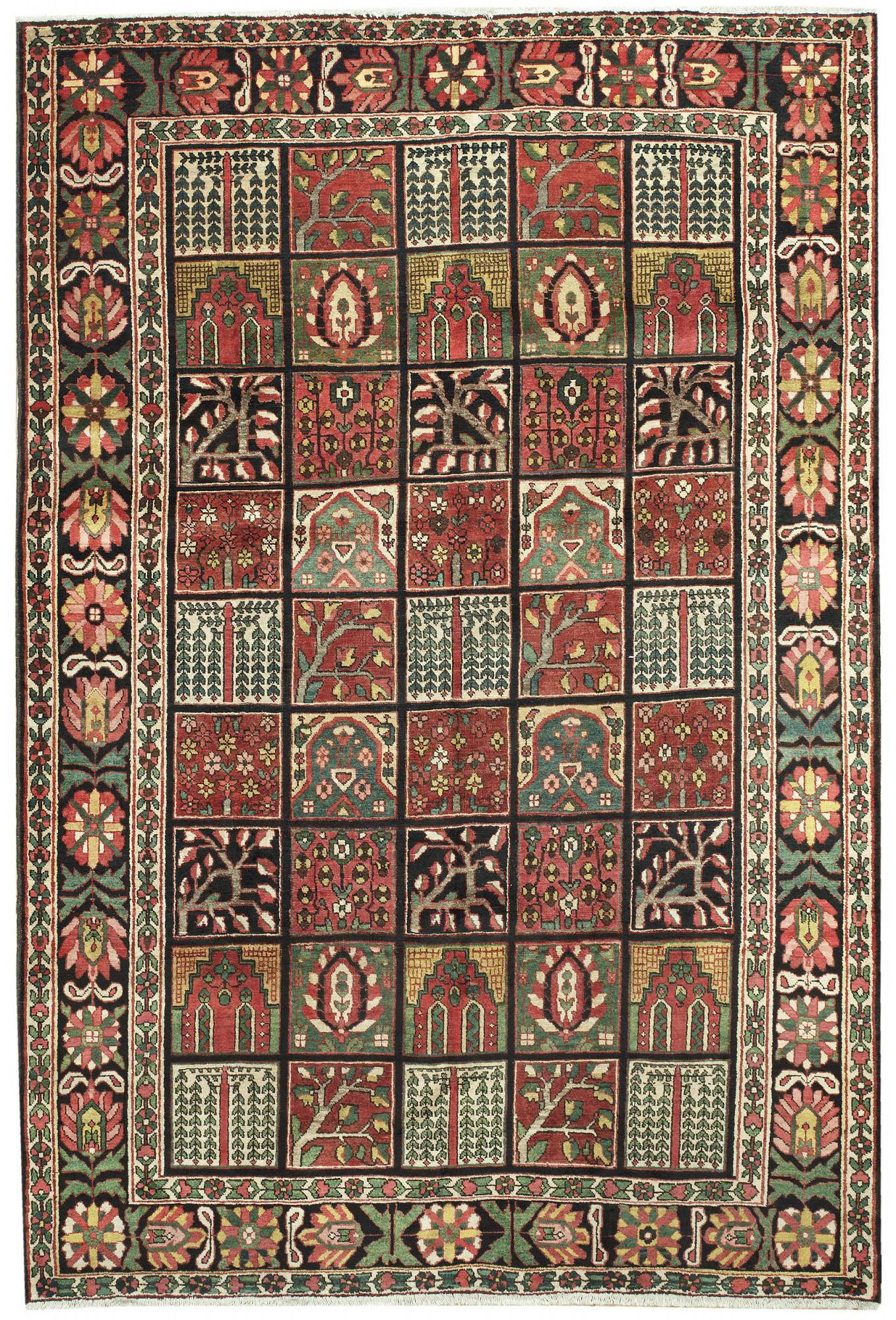 Persian Bakhtiari Rectangle 6x10