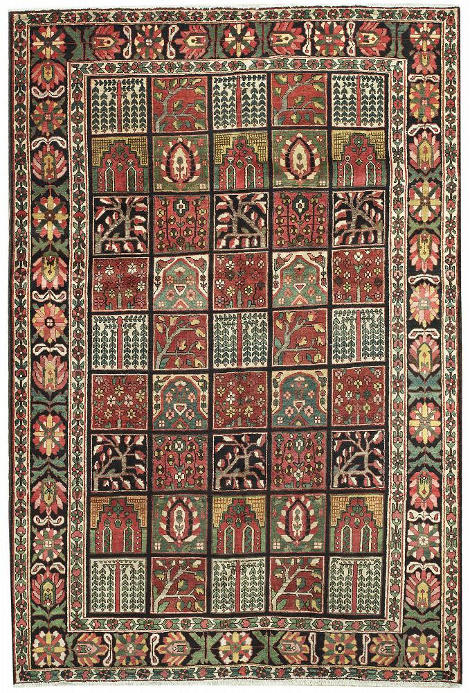 Persian Bakhtiari 6x10