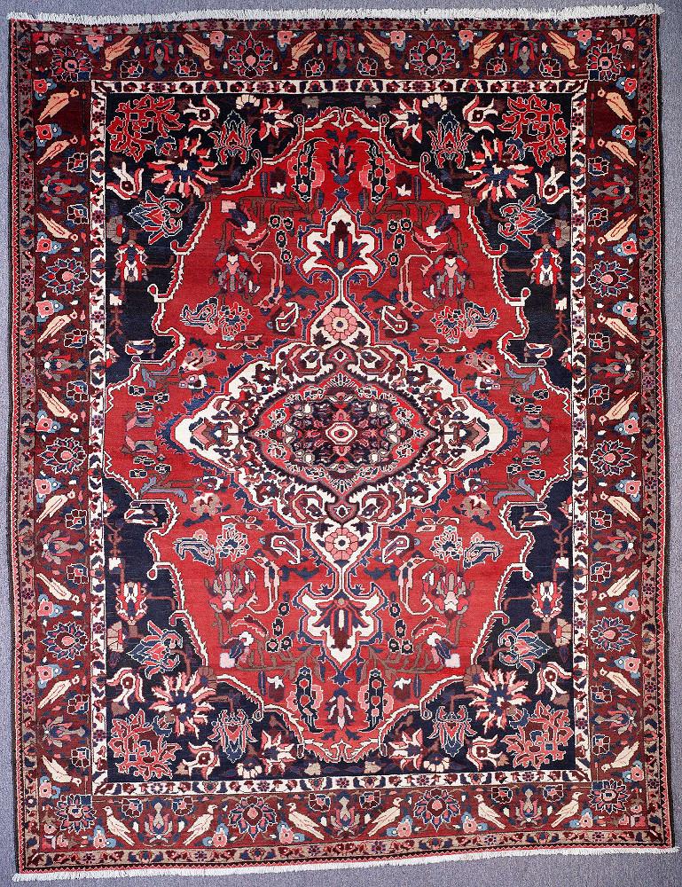 Persian Bakhtiari 8x11