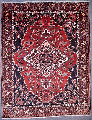 Persian Bakhtiari Rectangle 8x11