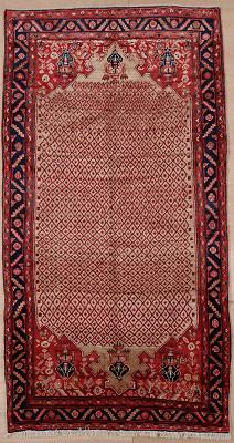 Persian Brojerd Rectangle 5x10
