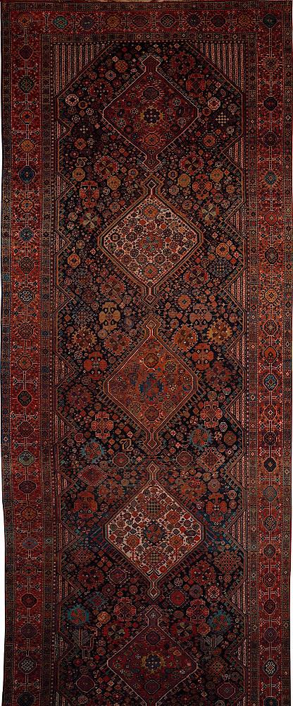 Persian Ghashghaei 8x22