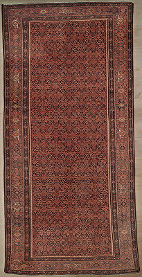 Persian Malayer Rectangle 8x16
