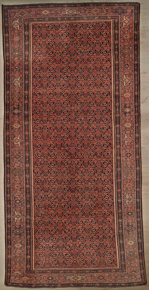 Persian Malayer 8x16