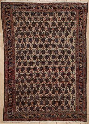 Persian Mahal 4x5